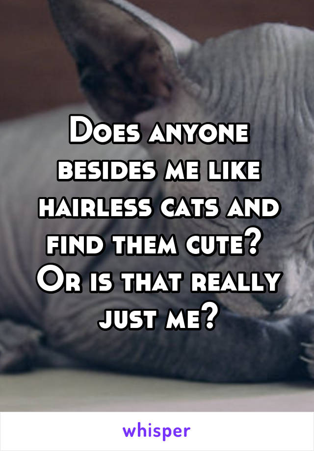 Does anyone besides me like hairless cats and find them cute?  Or is that really just me?
