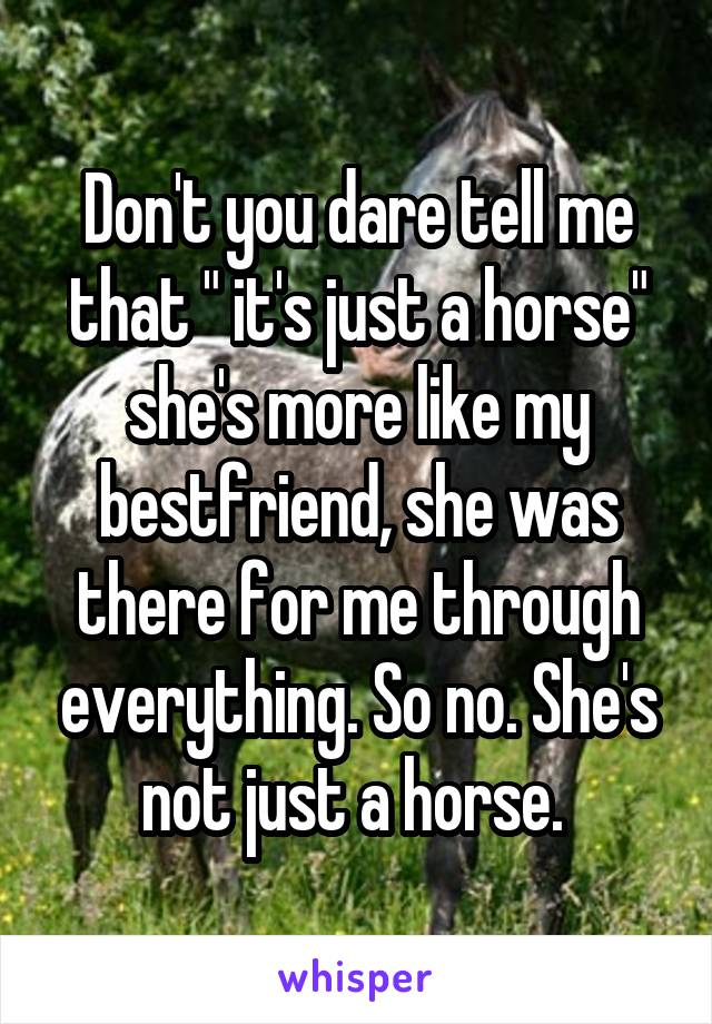 """Don't you dare tell me that """" it's just a horse"""" she's more like my bestfriend, she was there for me through everything. So no. She's not just a horse."""