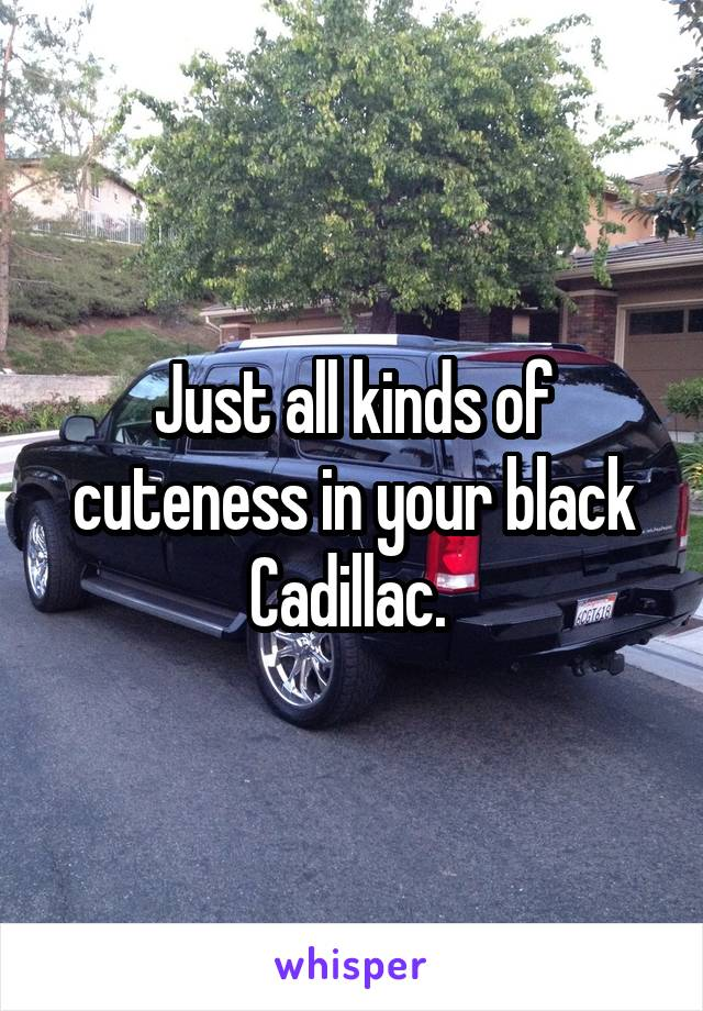 Just all kinds of cuteness in your black Cadillac.