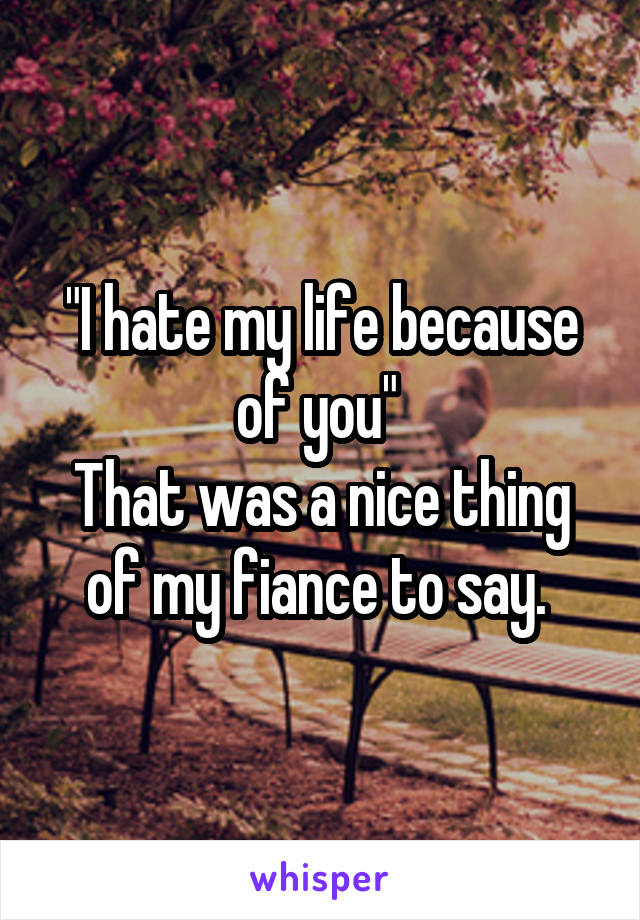 """""""I hate my life because of you""""  That was a nice thing of my fiance to say."""