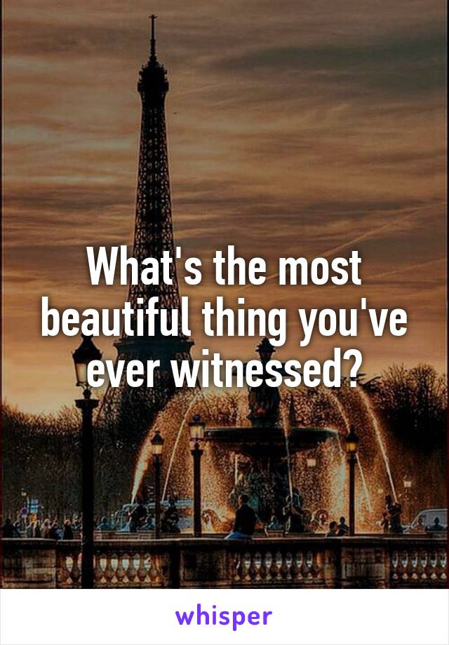 What's the most beautiful thing you've ever witnessed?