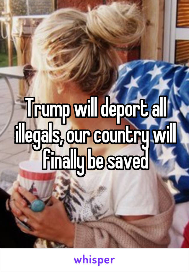 Trump will deport all illegals, our country will finally be saved