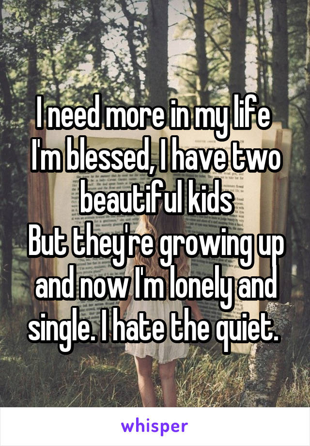 I need more in my life  I'm blessed, I have two beautiful kids But they're growing up and now I'm lonely and single. I hate the quiet.