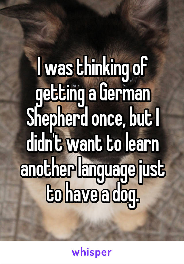I was thinking of getting a German Shepherd once, but I didn't want to learn another language just to have a dog.