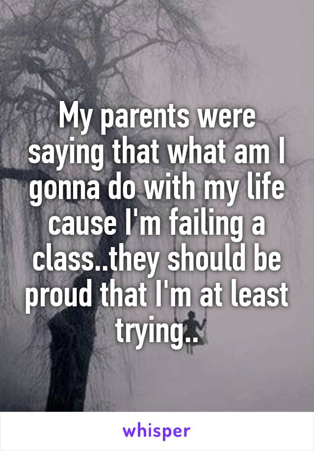 My parents were saying that what am I gonna do with my life cause I'm failing a class..they should be proud that I'm at least trying..
