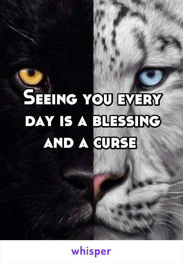 Seeing you every day is a blessing and a curse