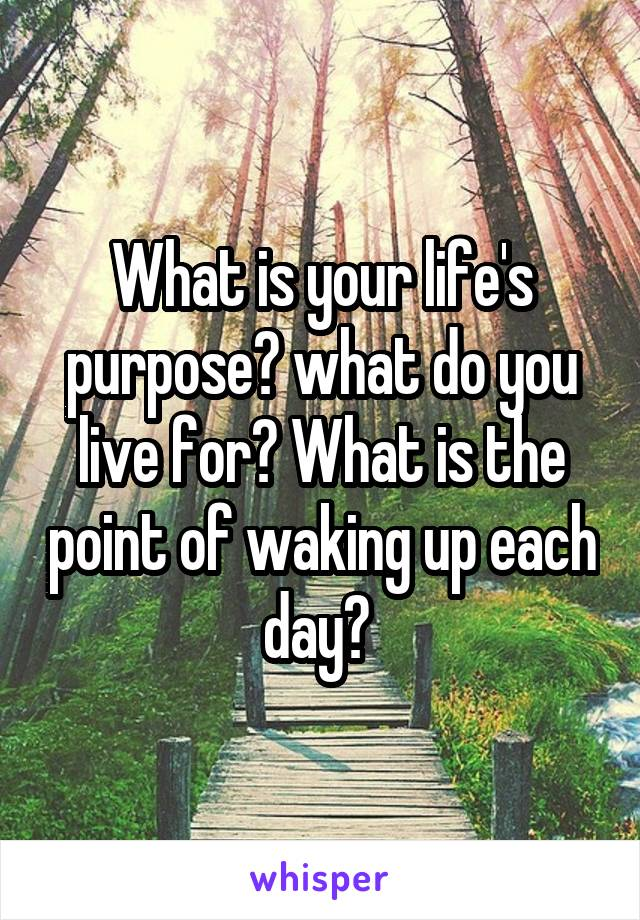 What is your life's purpose? what do you live for? What is the point of waking up each day?