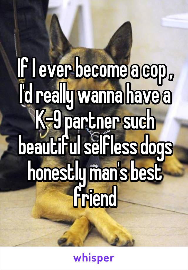 If I ever become a cop , I'd really wanna have a K-9 partner such beautiful selfless dogs honestly man's best friend