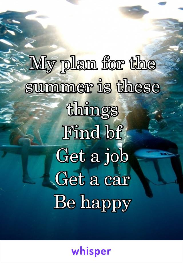 My plan for the summer is these things Find bf Get a job Get a car Be happy