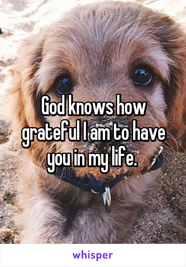 God knows how grateful I am to have you in my life.