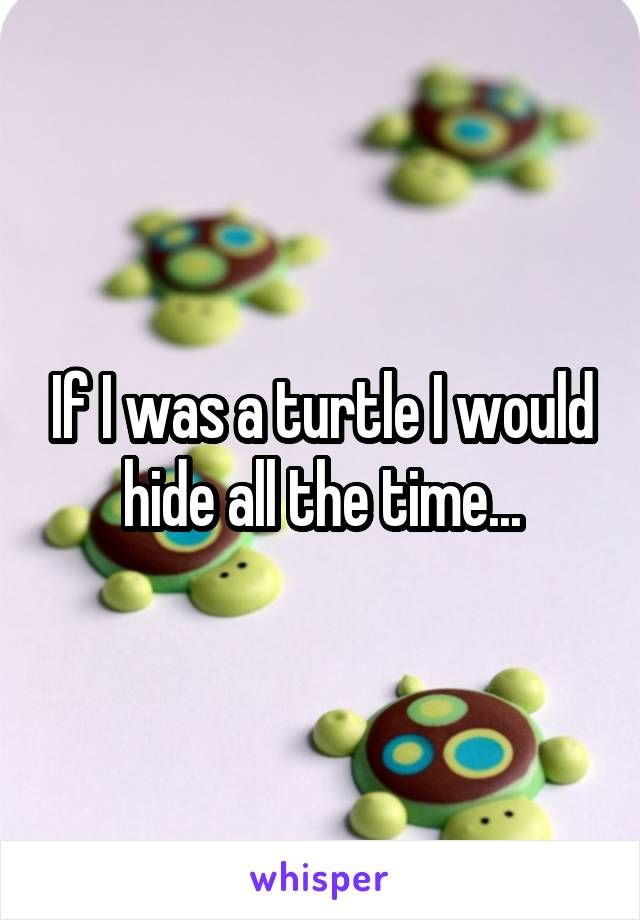 If I was a turtle I would hide all the time...