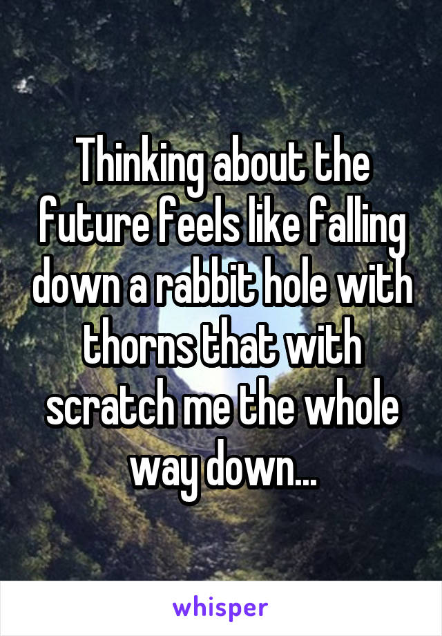 Thinking about the future feels like falling down a rabbit hole with thorns that with scratch me the whole way down...