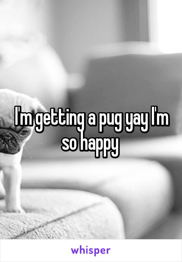 I'm getting a pug yay I'm so happy