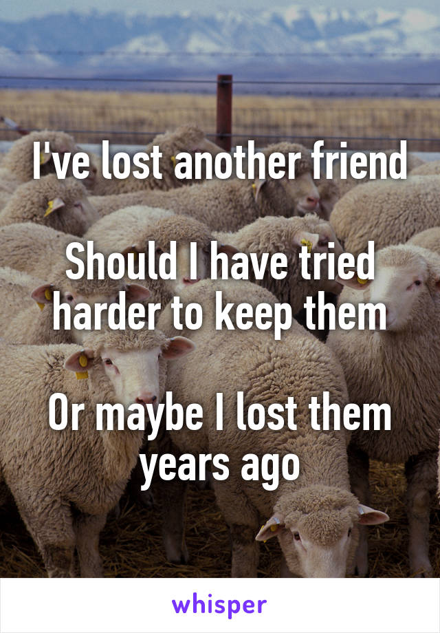 I've lost another friend  Should I have tried harder to keep them  Or maybe I lost them years ago