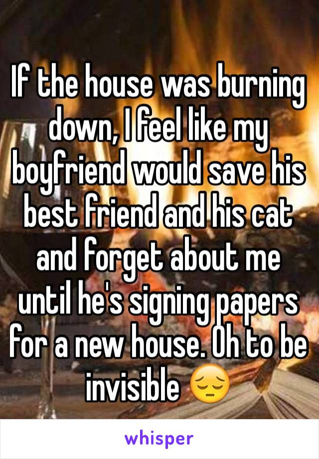 If the house was burning down, I feel like my boyfriend would save his best friend and his cat and forget about me until he's signing papers for a new house. Oh to be invisible 😔