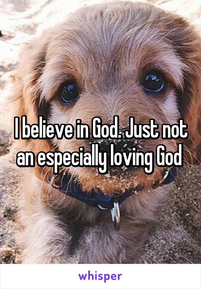 I believe in God. Just not an especially loving God