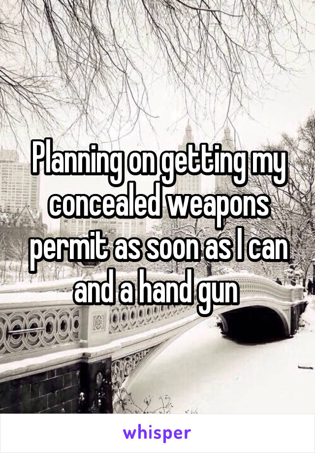 Planning on getting my concealed weapons permit as soon as I can and a hand gun