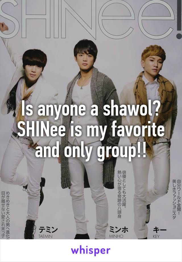 Is anyone a shawol? SHINee is my favorite and only group!!