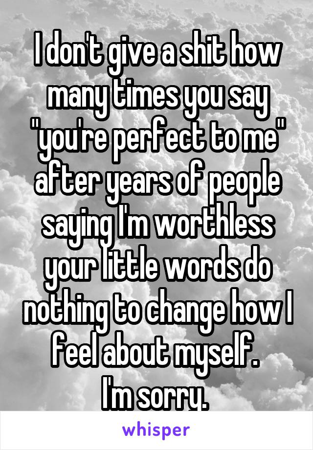 "I don't give a shit how many times you say ""you're perfect to me"" after years of people saying I'm worthless your little words do nothing to change how I feel about myself.  I'm sorry."