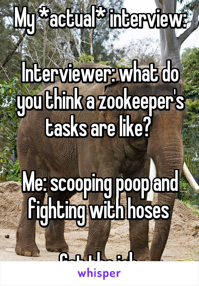 My *actual* interview:  Interviewer: what do you think a zookeeper's tasks are like?   Me: scooping poop and fighting with hoses   Got the job