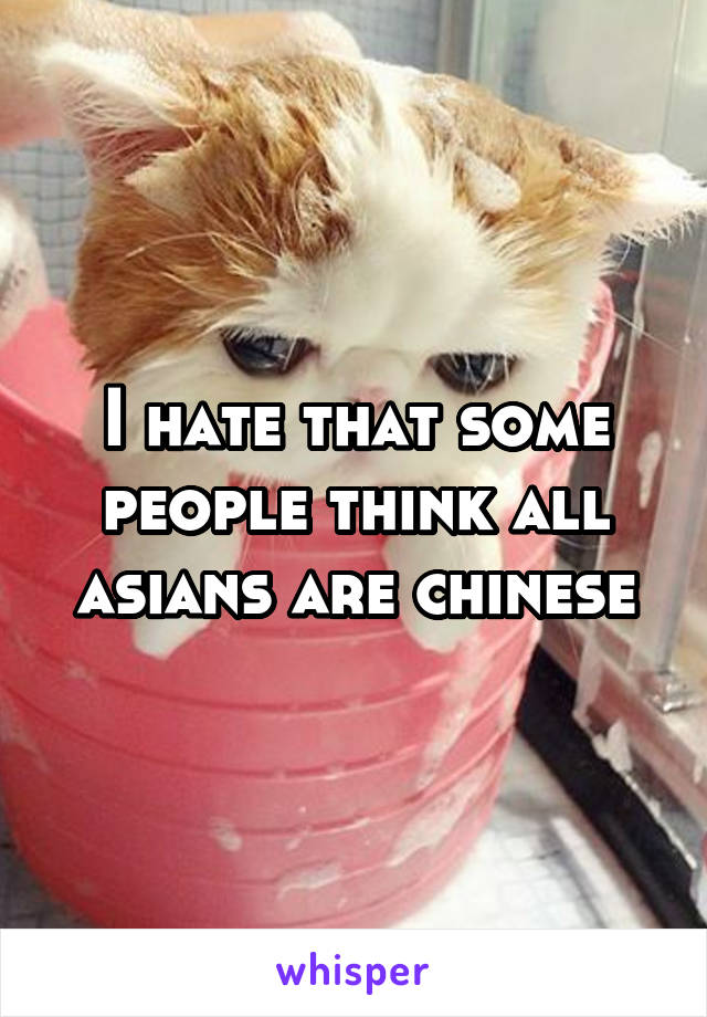 I hate that some people think all asians are chinese