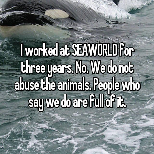 I worked at SEAWORLD for three years. No. We do not abuse the animals. People who say we do are full of it.