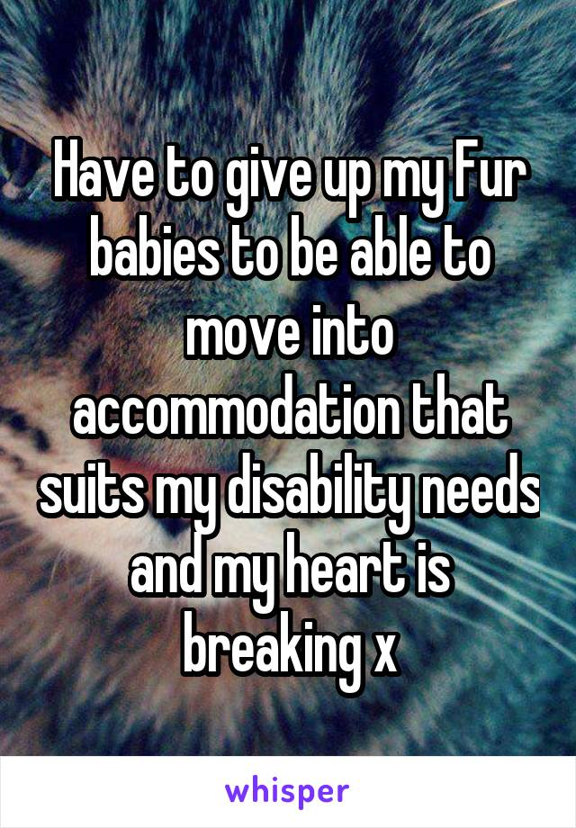 Have to give up my Fur babies to be able to move into accommodation that suits my disability needs and my heart is breaking x