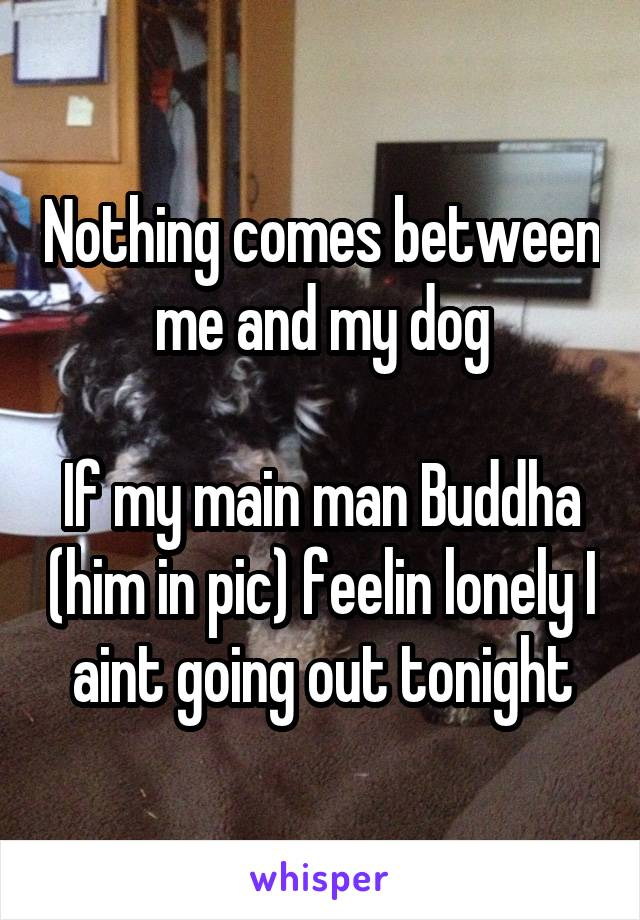 Nothing comes between me and my dog  If my main man Buddha (him in pic) feelin lonely I aint going out tonight