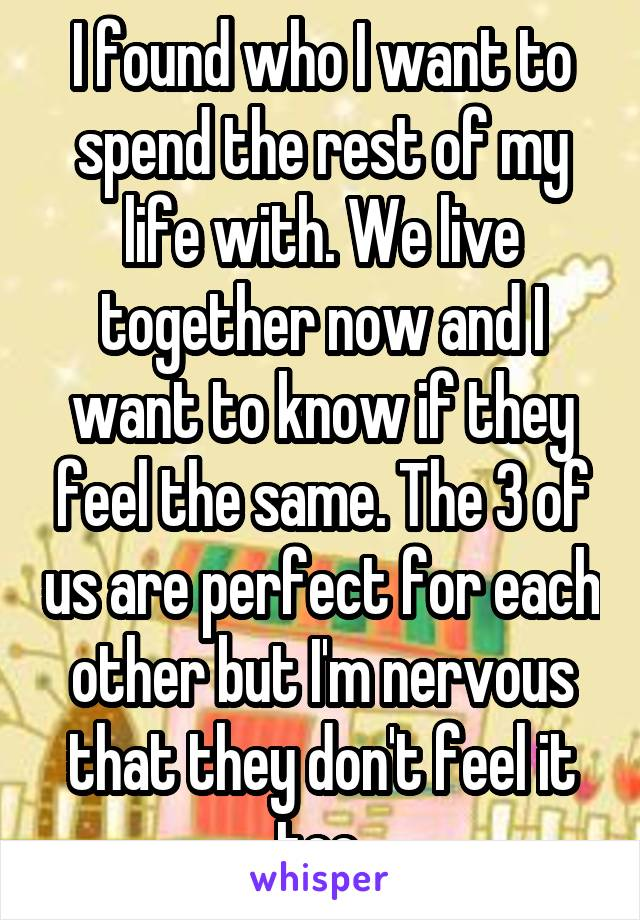 I found who I want to spend the rest of my life with. We live together now and I want to know if they feel the same. The 3 of us are perfect for each other but I'm nervous that they don't feel it too.