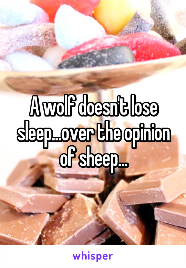 A wolf doesn't lose sleep...over the opinion of sheep...