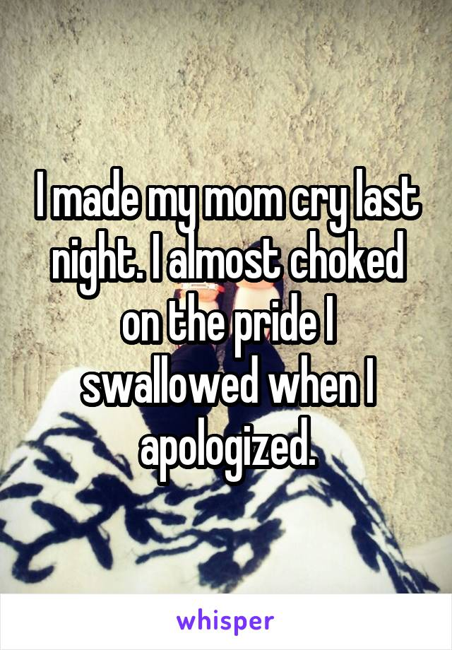 I made my mom cry last night. I almost choked on the pride I swallowed when I apologized.