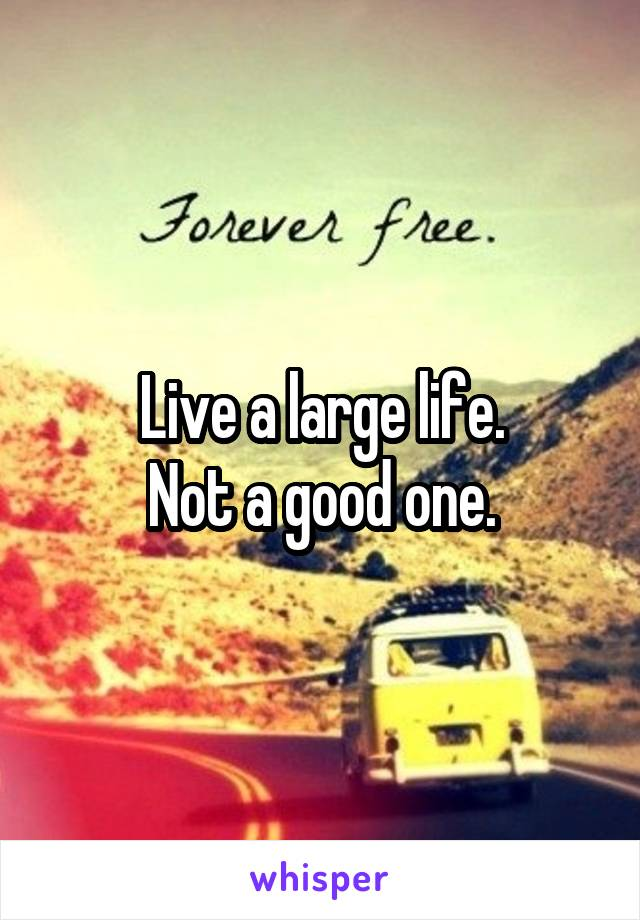 Live a large life. Not a good one.