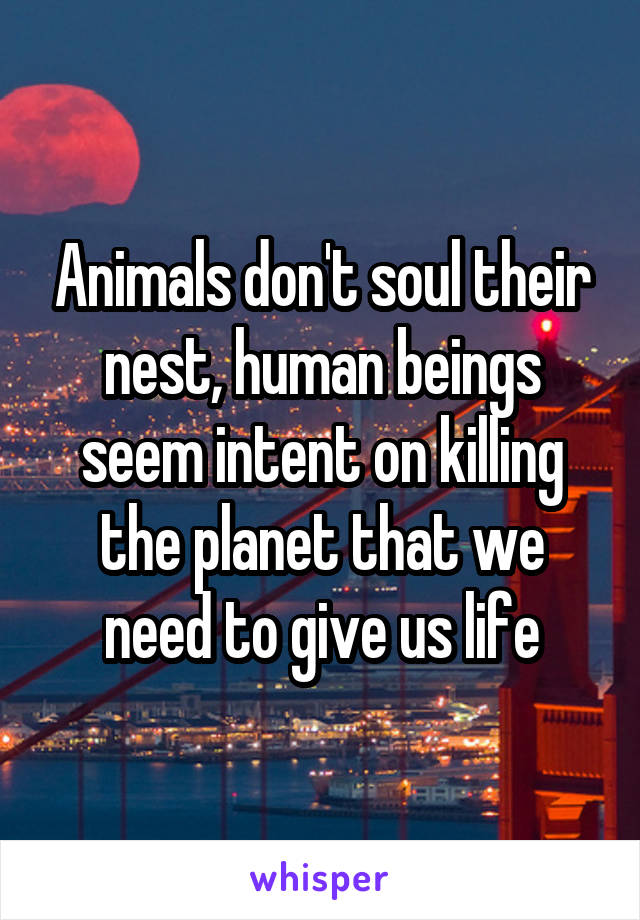 Animals don't soul their nest, human beings seem intent on killing the planet that we need to give us life