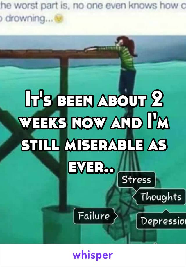 It's been about 2 weeks now and I'm still miserable as ever..