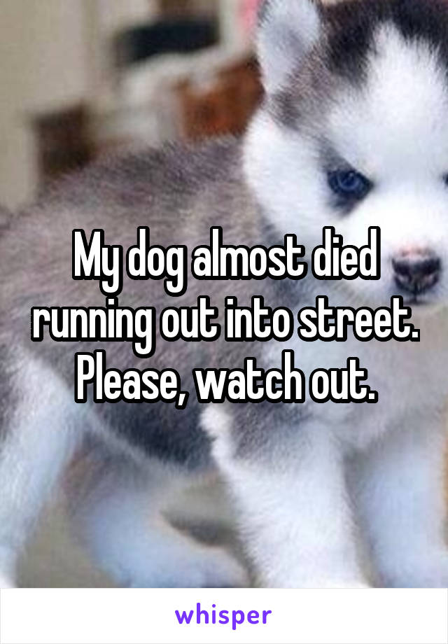 My dog almost died running out into street. Please, watch out.