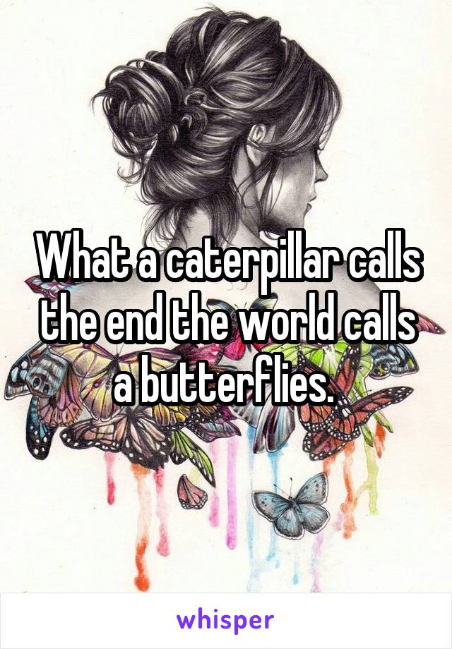 What a caterpillar calls the end the world calls a butterflies.