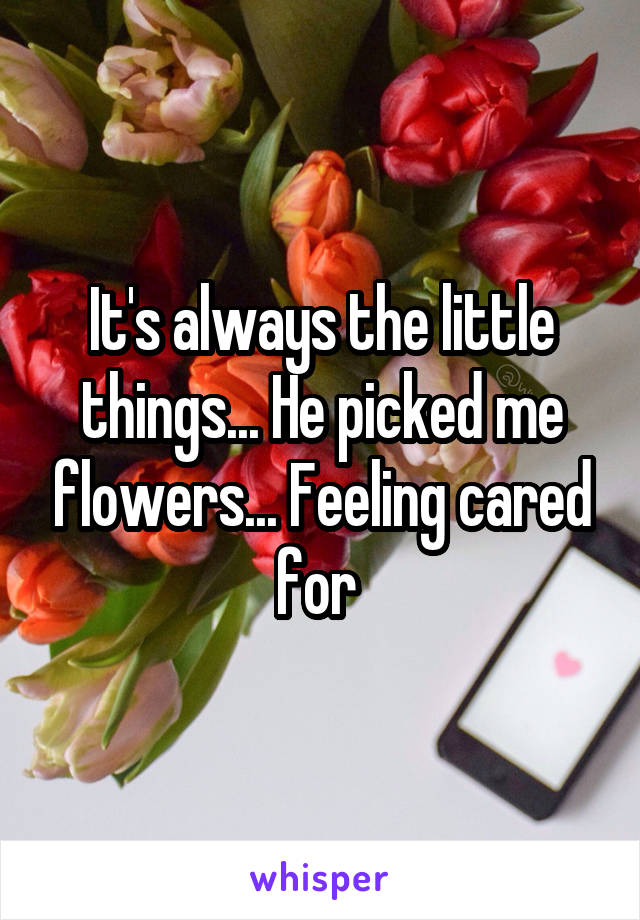 It's always the little things... He picked me flowers... Feeling cared for