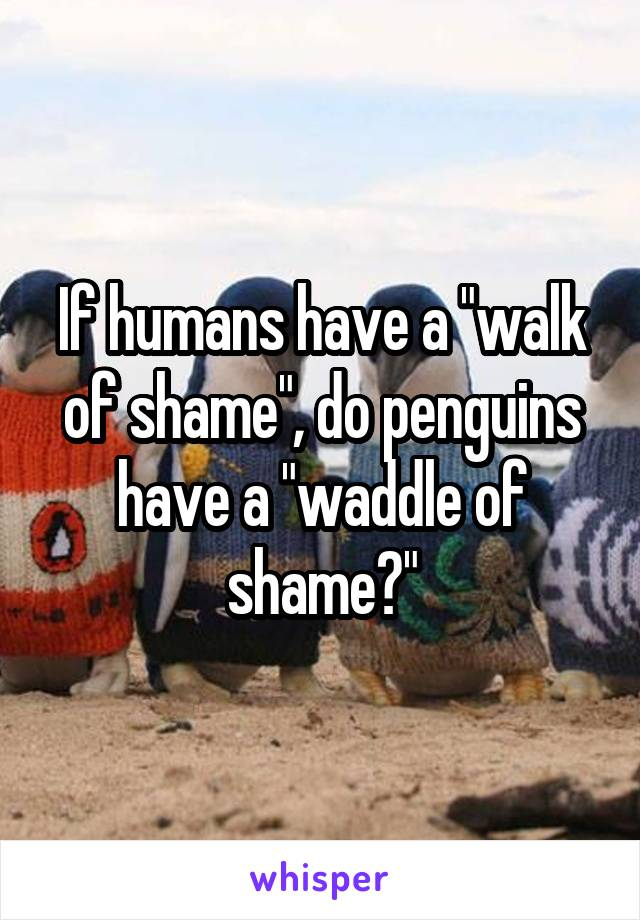 "If humans have a ""walk of shame"", do penguins have a ""waddle of shame?"""