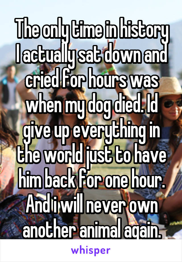 The only time in history I actually sat down and cried for hours was when my dog died. Id give up everything in the world just to have him back for one hour. And i will never own another animal again.