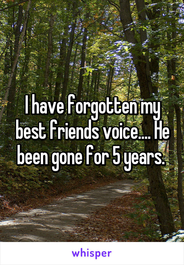 I have forgotten my best friends voice.... He been gone for 5 years.