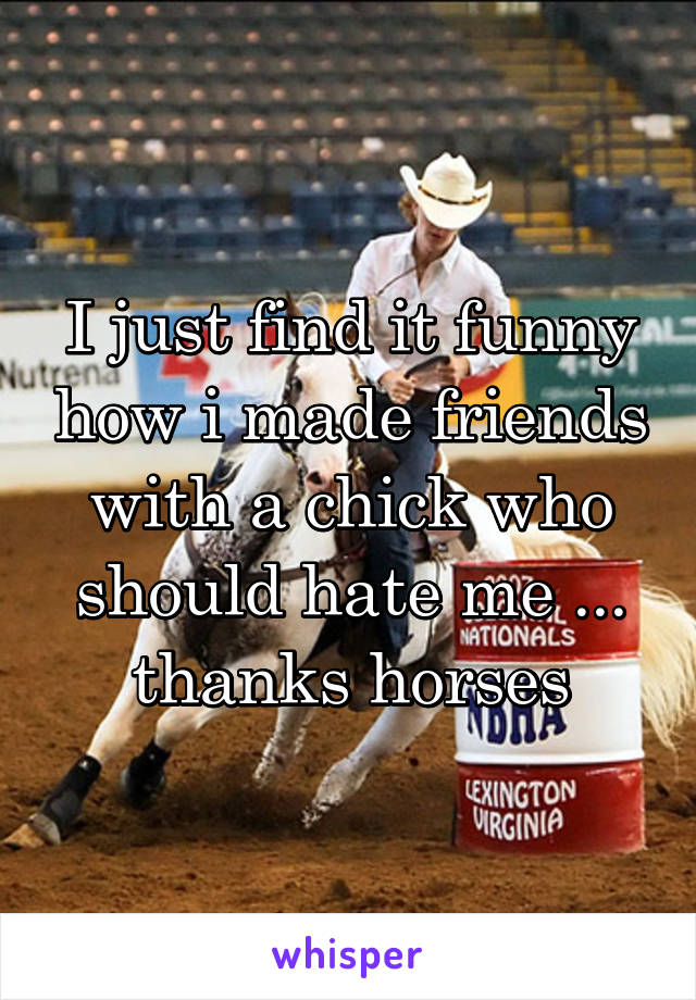 I just find it funny how i made friends with a chick who should hate me ... thanks horses