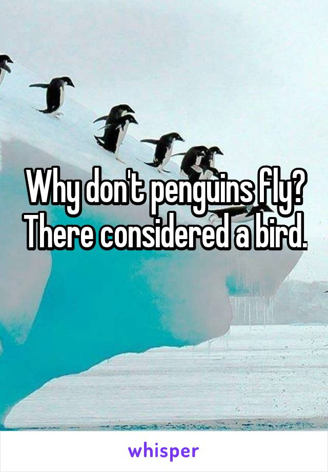 Why don't penguins fly? There considered a bird.
