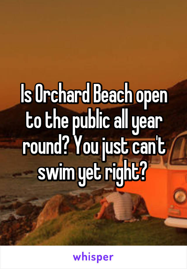 Is Orchard Beach open to the public all year round? You just can't swim yet right?