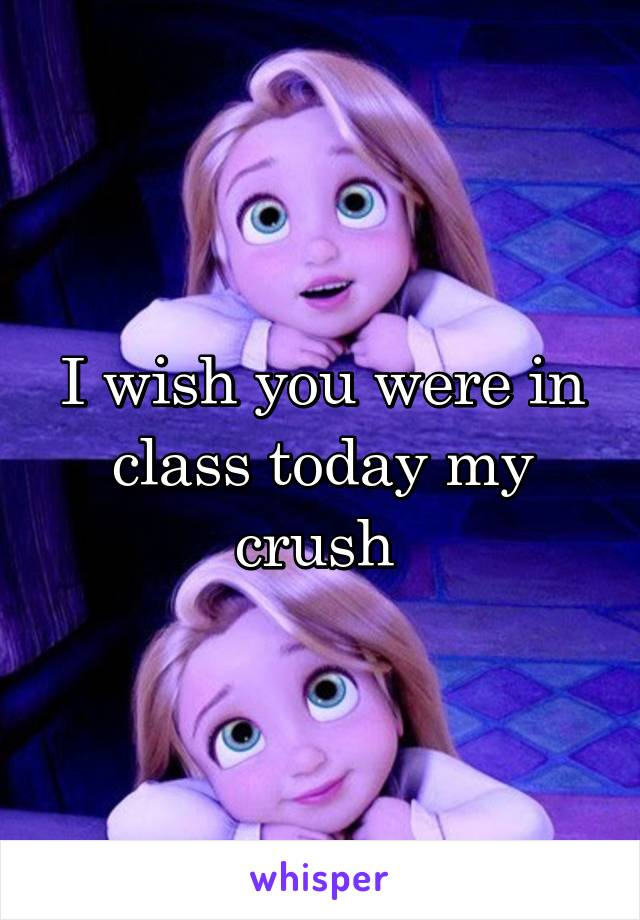 I wish you were in class today my crush