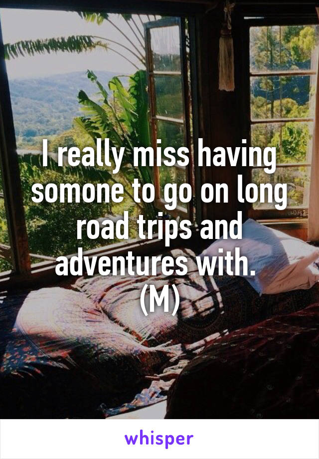 I really miss having somone to go on long road trips and adventures with.  (M)