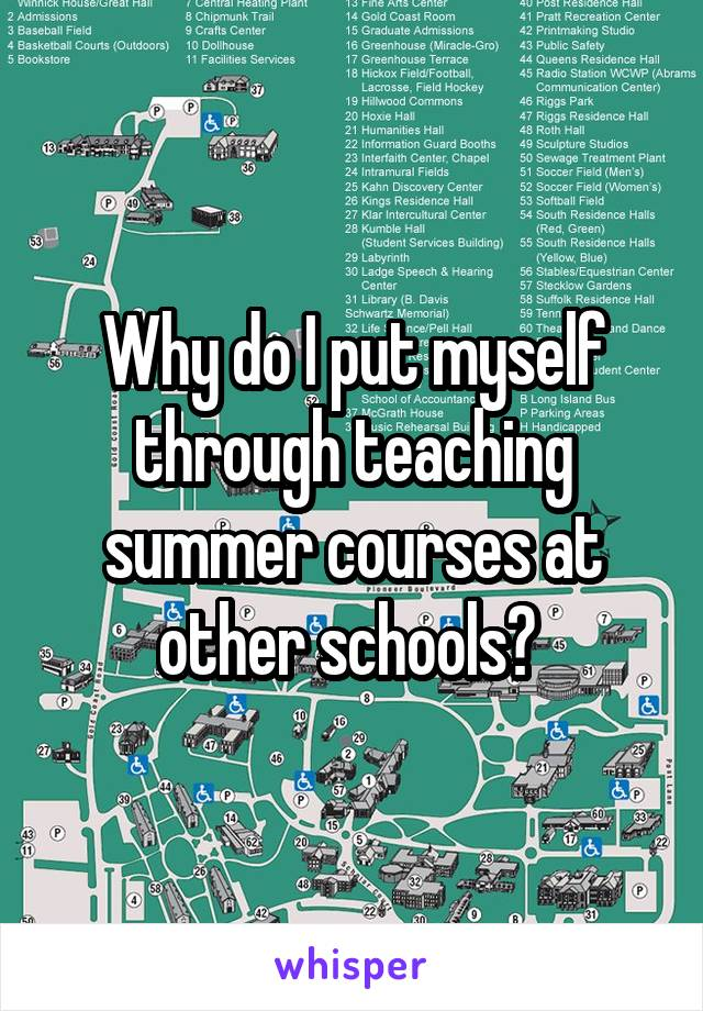Why do I put myself through teaching summer courses at other schools?
