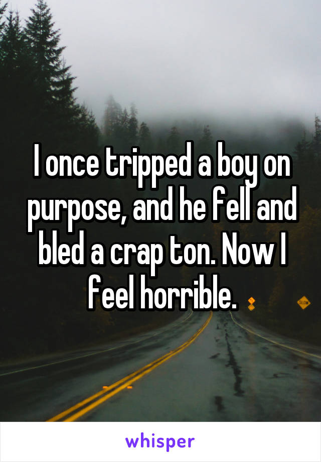 I once tripped a boy on purpose, and he fell and bled a crap ton. Now I feel horrible.