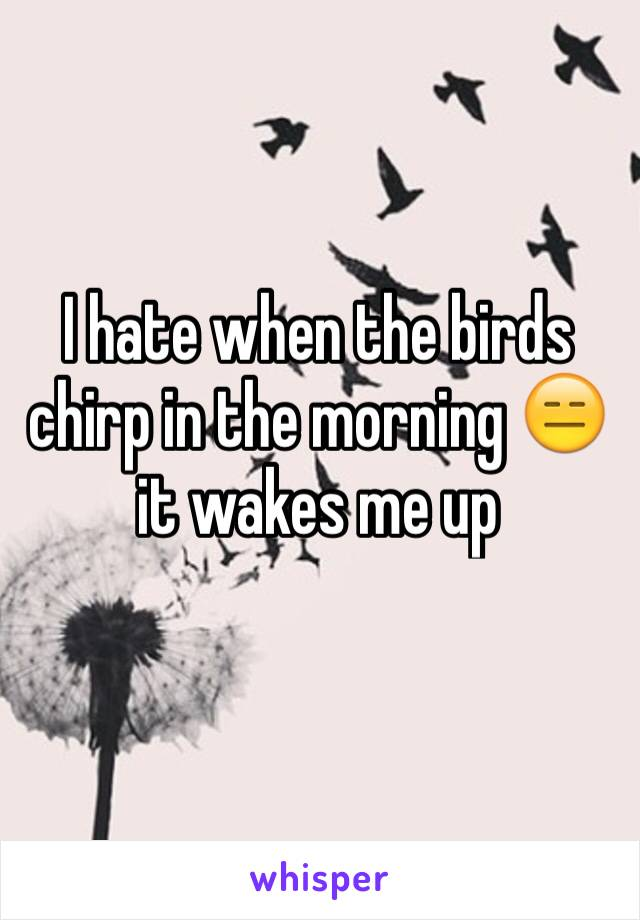 I hate when the birds chirp in the morning 😑 it wakes me up