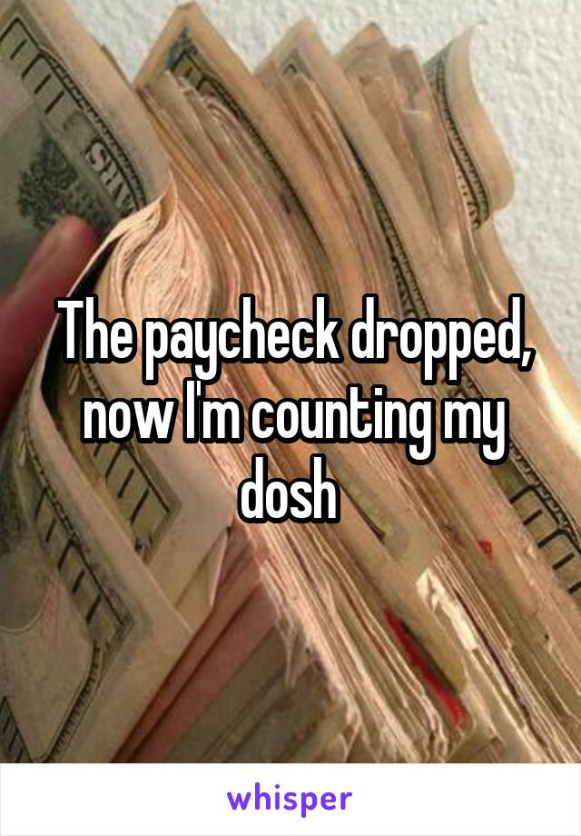 The paycheck dropped, now I'm counting my dosh