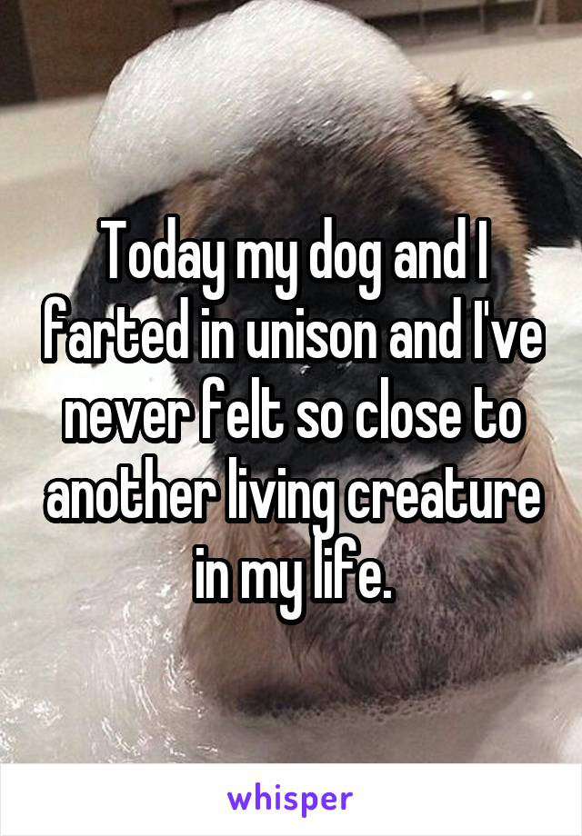 Today my dog and I farted in unison and I've never felt so close to another living creature in my life.